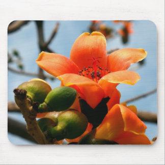 赤い絹綿の木の花 マウスパッド