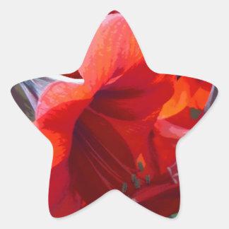 赤い花のアマリリス 星シール