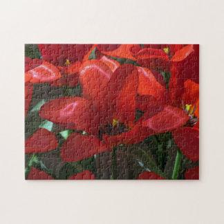 赤い花の写真のパズル ジグソーパズル