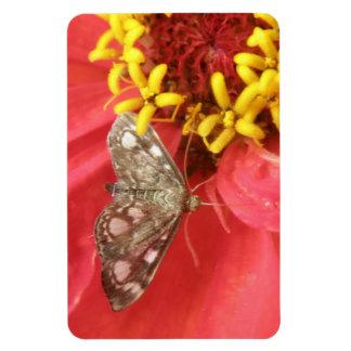赤い花の報酬の磁石のかわいらしいガ マグネット