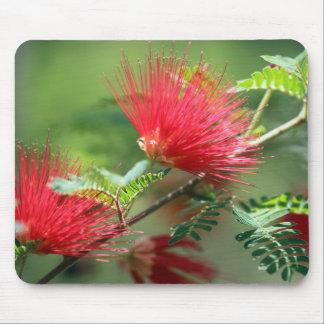 赤い花の爆発 マウスパッド