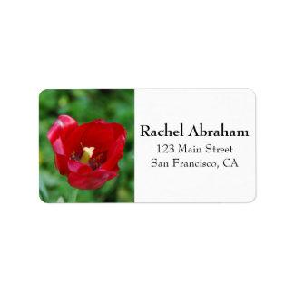 赤い花のMarcoの写真 ラベル