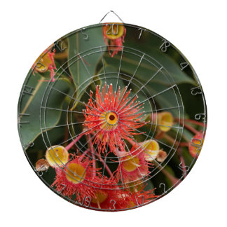 赤い花盛りのゴム(Corymbiaのficifolia) ダーツボード