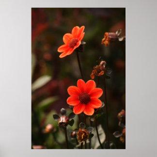 赤い花 ポスター