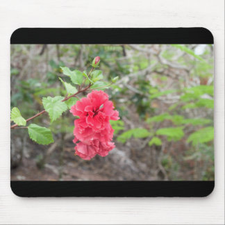 赤い花 マウスパッド