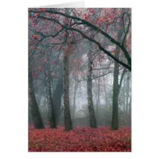 赤い葉が付いている秋の森林の霧 カード