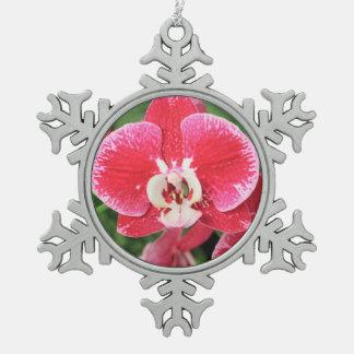 赤い蘭の花 スノーフレークピューターオーナメント