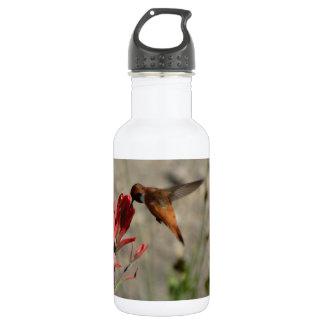 赤い野生の花のハチドリ ウォーターボトル
