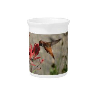 赤い野生の花のハチドリ ピッチャー