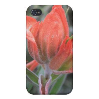 赤い野生の花4/4s iPhone 4/4Sケース