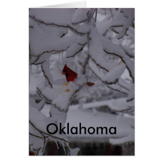 赤い鳥(オクラホマ) カード