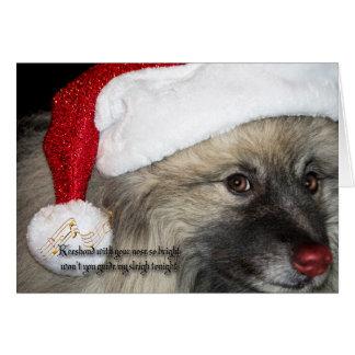 赤い鼻のKeeshondのクリスマスカード カード