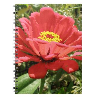 赤い《植物》百日草のノート ノートブック