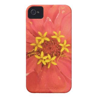 赤い《植物》百日草のマクロiphone 4ケース Case-Mate iPhone 4 ケース