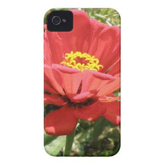 赤い《植物》百日草のiphone 4ケース Case-Mate iPhone 4 ケース