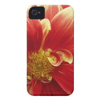 赤い《植物》百日草のiPhone 4/4Sの箱及びクレジットカードのホールダー Case-Mate iPhone 4 ケース