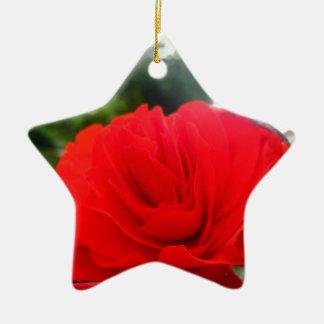 赤い 陶器製星型オーナメント