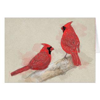赤い(鳥)ショウジョウコウカンチョウ カード