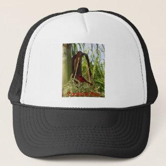 赤い(鳥)ショウジョウコウカンチョウ キャップ