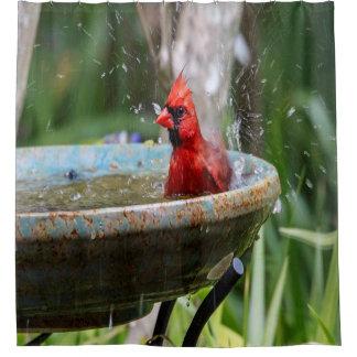 赤い(鳥)ショウジョウコウカンチョウ シャワーカーテン