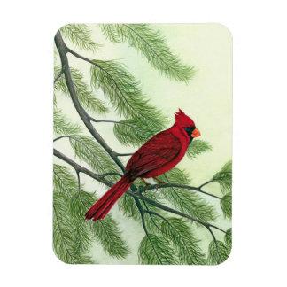 赤い(鳥)ショウジョウコウカンチョウ-磁石 マグネット