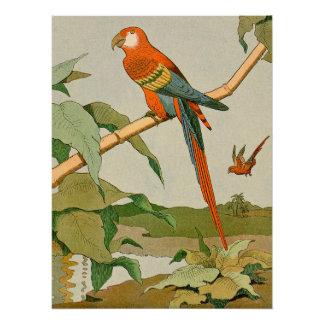 赤および緑のコンゴウインコのジャングルのオウム ポスター