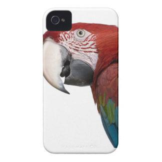 赤および緑のコンゴウインコ- Araのchloropterus Case-Mate iPhone 4 ケース