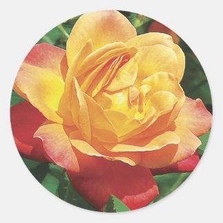 赤くおよび黄色バラのステッカー ラウンドシール