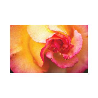赤くおよび黄色バラの花 キャンバスプリント