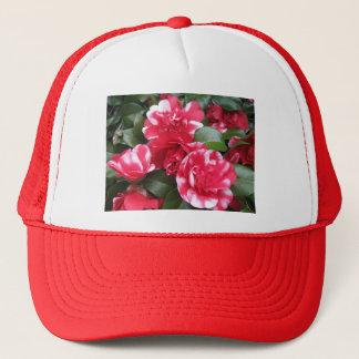 赤く及び白くストライプのなバラ キャップ