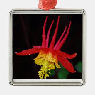 赤く及び黄色のオダマキ(植物) メタルオーナメント