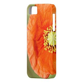 赤く及び黄色のケシの箱 iPhone SE/5/5s ケース