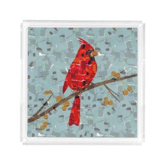 赤く基本的なモザイク アクリルトレー