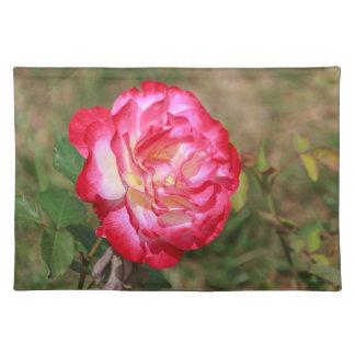 赤く、ピンク白いバラのランチョンマット ランチョンマット