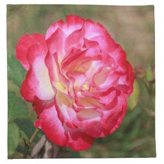 赤く、ピンク白いバラの布のナプキン ナプキンクロス