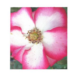 赤と白の花のクローズアップ ノートパッド