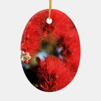 赤によってはPohutukawaの木が開花します セラミックオーナメント