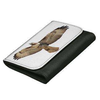 赤によって後につかれるタカの鳥の野性生物の飛んでいるな財布