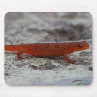 赤によって斑点を付けられるNewtのmousepad マウスパッド