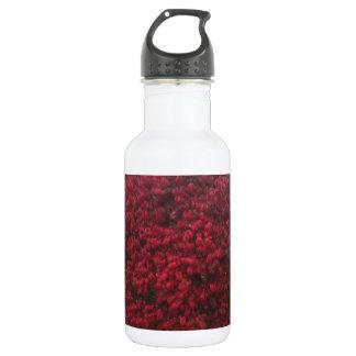 赤の葉2 ウォーターボトル