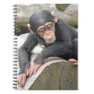 赤ん坊のチンパンジーのノート ノートブック