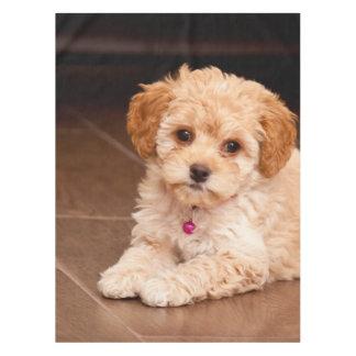 赤ん坊のマルタのプードルの組合せかmaltipooの小犬 テーブルクロス