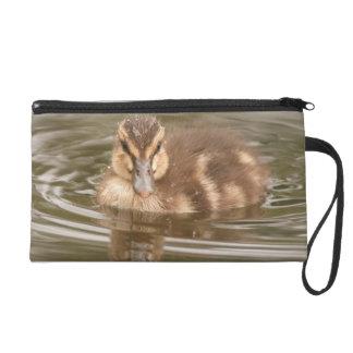 赤ん坊の子ガモのアヒルの鳥の野性生物の動物のバッグ リストレット