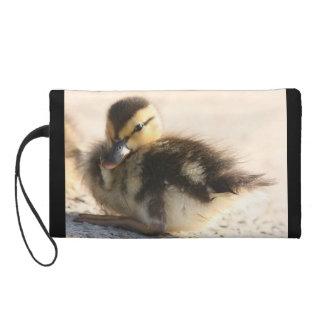 赤ん坊の子ガモのアヒルの鳥の野性生物の動物の池のバッグ リストレット