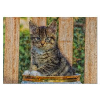 赤ん坊の子ネコのポット カッティングボード