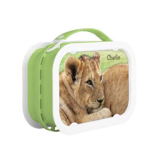 赤ん坊トラのカスタムなモノグラムのお弁当箱 ランチボックス
