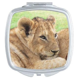 赤ん坊トラのポケット鏡