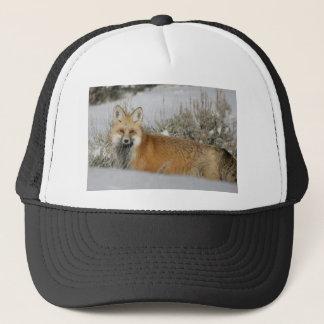 赤キツネの野生動物のギフトのアイディア キャップ