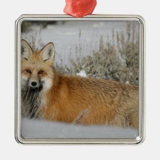 赤キツネの野生動物のギフトのアイディア メタルオーナメント