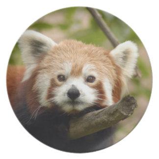 赤パンダ005 プレート
